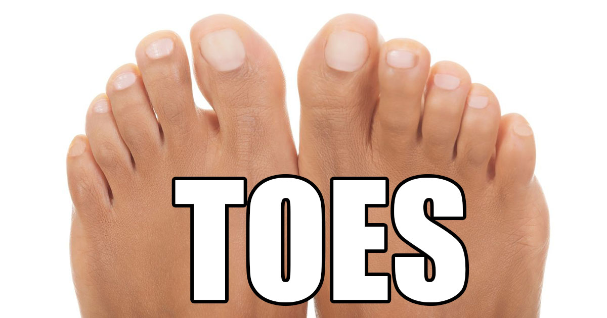Toes OpenGraph Image